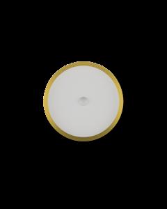 LED Ceiling Light RGBW | LED吸顶灯 RGBW-维也纳金
