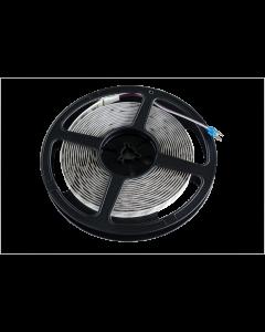 RGBW LED Strip 5m | LED 灯带 RGBW 5m
